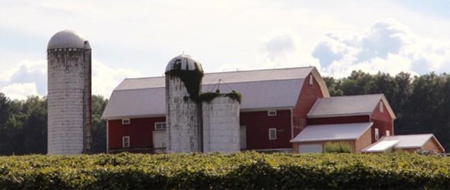 Stever Hill Vineyard Barn