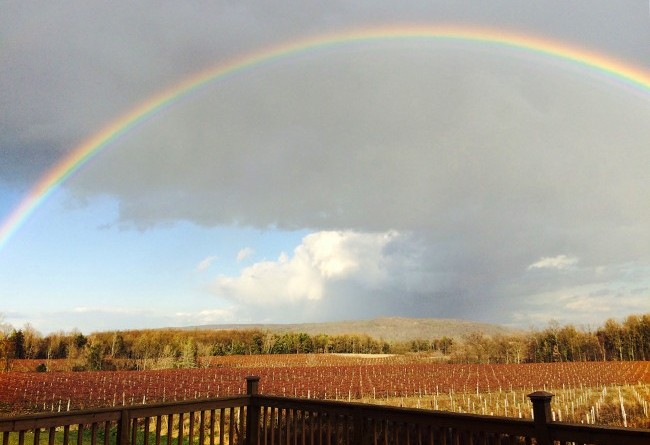 stever hill vineyards full rainbow